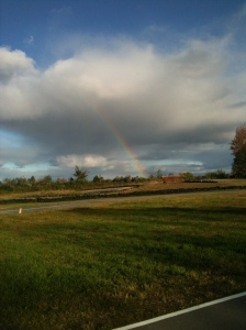 Rainbow Country Too, Summer 2013